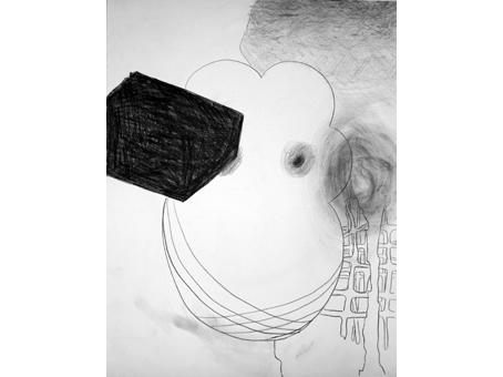 42 cm x 59 cm, 2009
